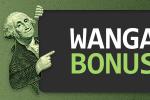 Уникальная акция WANGA BONUS от компании Fort Financial Services!